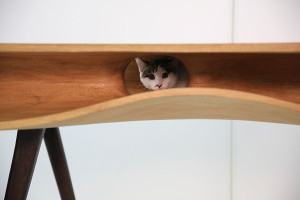 cat-furniture-creative-design-2