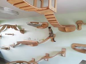 cat-furniture-creative-design-361