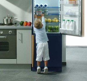 REZ24c487_Electrolux_Fridge_family2a